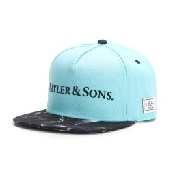 Cayler&Sons WL - BK Rocks  Cap - Mint/Black