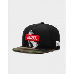 Cayler & Sons  WL Trust Cap - Black